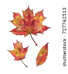 silhouettes of leaves of maple... | Shutterstock . vector #727762513