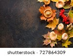 autumn background with autumn... | Shutterstock . vector #727864309