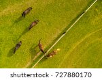 aerial view of grazing horses... | Shutterstock . vector #727880170