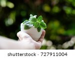 hand holding tree growing on... | Shutterstock . vector #727911004