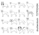 dog  pooch  breed  and other... | Shutterstock .eps vector #727952434