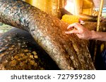 female hands are gilding a... | Shutterstock . vector #727959280