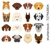 doberman  dalmatian  dachshund  ... | Shutterstock .eps vector #727963804