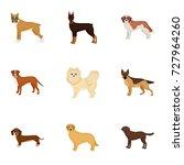 sheepdog  dachshund  bernard ... | Shutterstock .eps vector #727964260