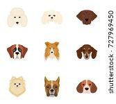 doberman  dalmatian  dachshund  ... | Shutterstock .eps vector #727969450