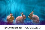 rabbits in forest moonlight for ... | Shutterstock . vector #727986310