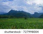 corn farm green nature outdoor... | Shutterstock . vector #727998004