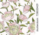 peony floral seamless pattern... | Shutterstock .eps vector #728020429