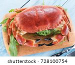 cooked brown crab or edible... | Shutterstock . vector #728100754