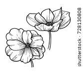 flowers  poppies. vector... | Shutterstock .eps vector #728130808