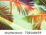 coconut palm tree under blue... | Shutterstock . vector #728168659