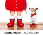 Stock photo christmas santa claus jack russell dog isolated on white background with red boots for the 728240329