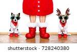christmas couple of santa claus ... | Shutterstock . vector #728240380