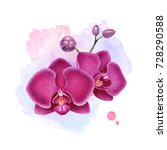 watercolor illustration of... | Shutterstock . vector #728290588