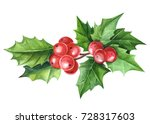 christmas holly watercolor on... | Shutterstock . vector #728317603