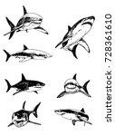 graphical set of sharks... | Shutterstock .eps vector #728361610