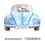 Stock photo cute gray striped happy cat lying on a blue old retro car title on a car number is so happy 728380840