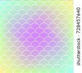fish skin on trendy gradient...   Shutterstock .eps vector #728457640