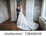 beautiful newlyweds gentle... | Shutterstock . vector #728468248