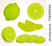 vector lime isolated on white... | Shutterstock .eps vector #728490064