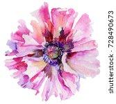 wildflower poppy flower in a... | Shutterstock . vector #728490673