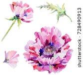 wildflower poppy flower in a... | Shutterstock . vector #728490913