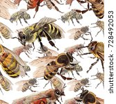 exotic bee wild insect pattern... | Shutterstock . vector #728492053