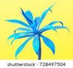 aloe. art gallery fashion... | Shutterstock . vector #728497504