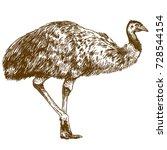 vector antique engraving... | Shutterstock .eps vector #728544154