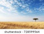 cut grass road through a... | Shutterstock . vector #728599564