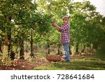 kids picking fresh fruits and... | Shutterstock . vector #728641684