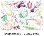 set of hand drawn vegetables on ... | Shutterstock .eps vector #728691958