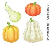 set of different pumpkins | Shutterstock . vector #728695570