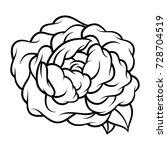 flower rose  black and white.... | Shutterstock .eps vector #728704519