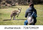 Woman Feeding Wild Kangaroo