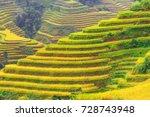 ladder rice fields in vietnam.   Shutterstock . vector #728743948