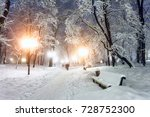 footpath in a fabulous winter... | Shutterstock . vector #728752300
