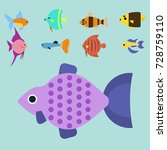 exotic tropical fish race...   Shutterstock .eps vector #728759110