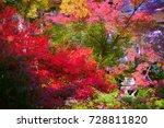 hokyoin houkyouin  temple zen...   Shutterstock . vector #728811820
