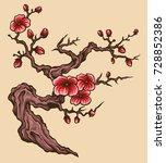 vector illustration of japanese ... | Shutterstock .eps vector #728852386