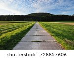 way to forest | Shutterstock . vector #728857606