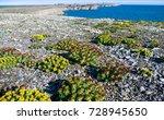 the arctic  the new earth  many ... | Shutterstock . vector #728945650