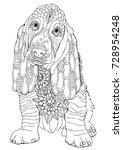 basset. hand drawn dog. sketch... | Shutterstock .eps vector #728954248