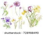 big set watercolor collection... | Shutterstock . vector #728988490