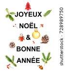 joyeux noel   french greeting... | Shutterstock . vector #728989750