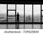 back view of businessman...   Shutterstock . vector #729025834