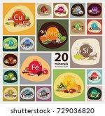 """20 minerals for human health""... | Shutterstock .eps vector #729036820"