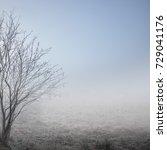vintage nature background | Shutterstock . vector #729041176