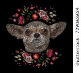 portrait of a dog chihuahua...   Shutterstock .eps vector #729063634