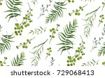 palm fern different tree... | Shutterstock .eps vector #729068413